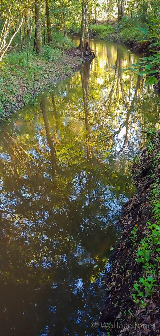 Tenoroc FMA Lost Lakes